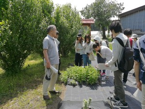 平成30年度 「薬用植物園・ハーブ園」での学外実習の実施