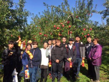 留学生のりんご狩り体験が行われました